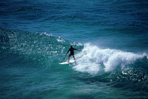 Guy Surfing at Surfers Paradise
